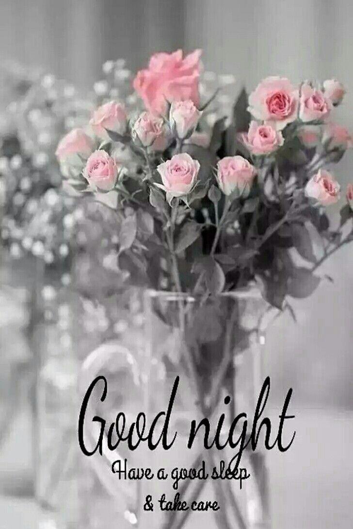 Gute nacht bilder witzig - Gute nacht bilder witzig