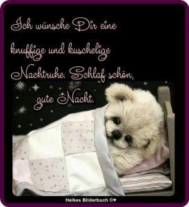 Guten Nacht Sprüche Für Freunde Am Liebsten Sprüche In Bildern