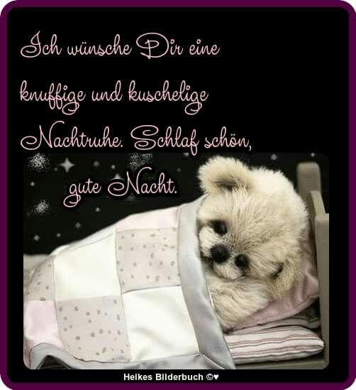 Gute nacht für freunde - Gute nacht für freunde