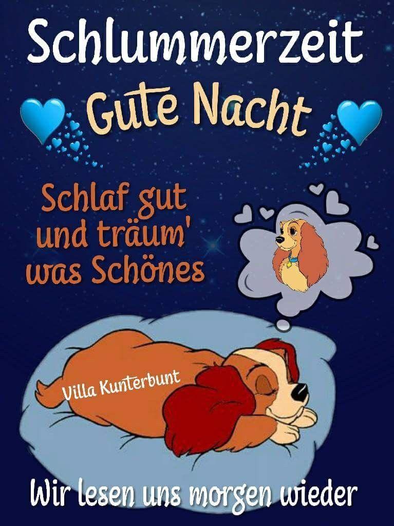 Freche Gute Nacht Sprüche Bilder Und Sprüche Für Whatsapp