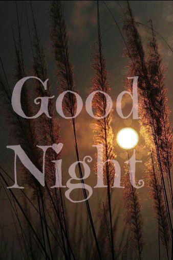 Gute nacht geschichte online hören - Gute nacht geschichte online hören