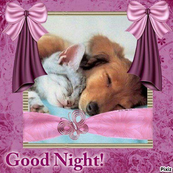 Gute nacht geschichten für kleine kinder - Gute nacht geschichten für kleine kinder