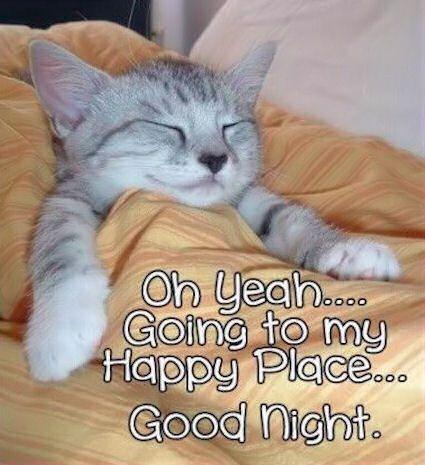 Gute nacht geschichten online lesen - Gute nacht geschichten online lesen