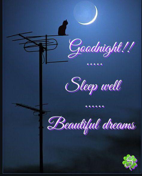 Gute nacht grüße für den liebsten - Gute nacht grüße für den liebsten