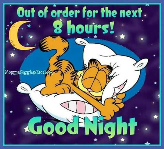 Gute nacht hasi - Gute nacht hasi