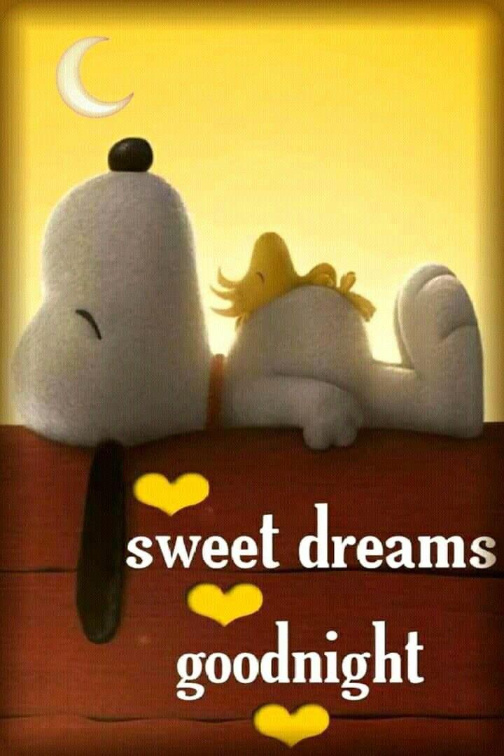 Gute nacht minnie - Gute nacht minnie