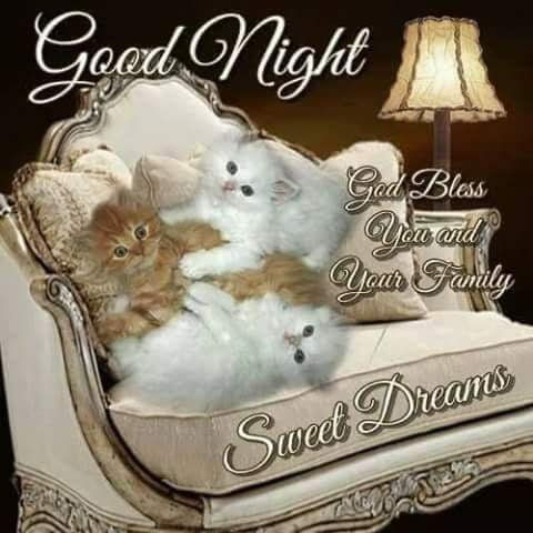 Gute nacht nachricht an freund - Gute nacht nachricht an freund