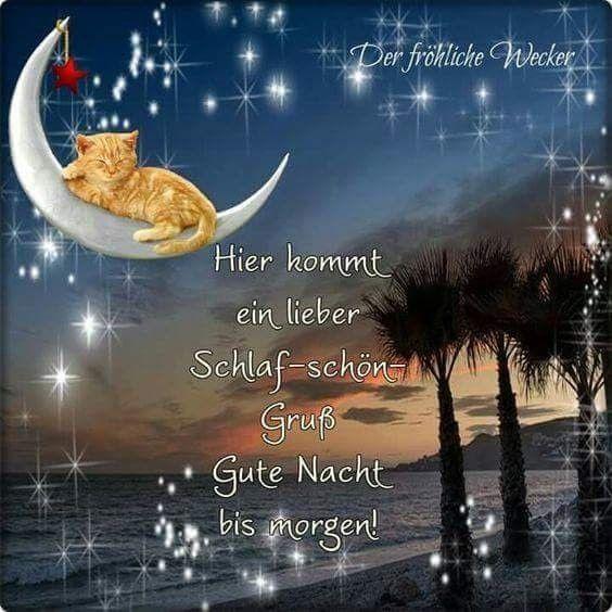 Gute nacht rumänisch - Gute nacht rumänisch