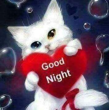 Gute nacht sprüche für freundin - Gute nacht sprüche für freundin