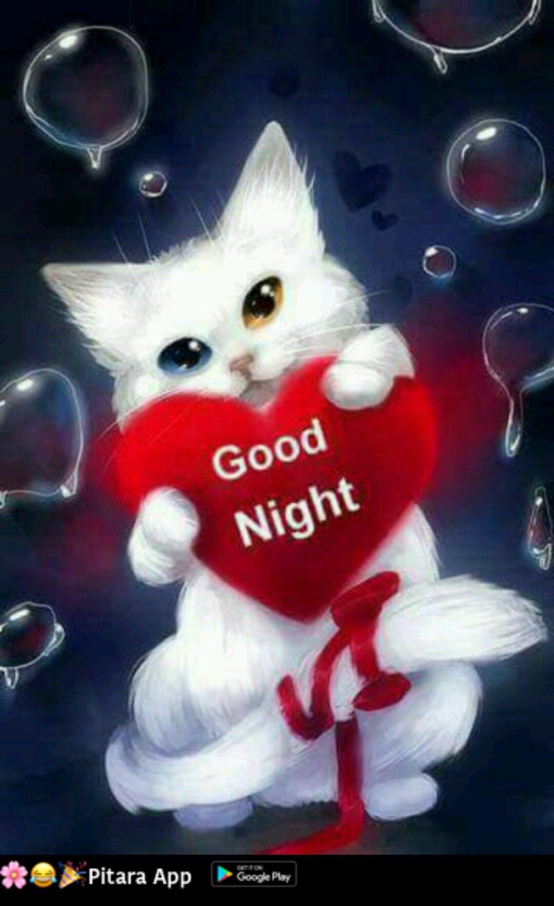 Gute nacht und - Gute nacht und