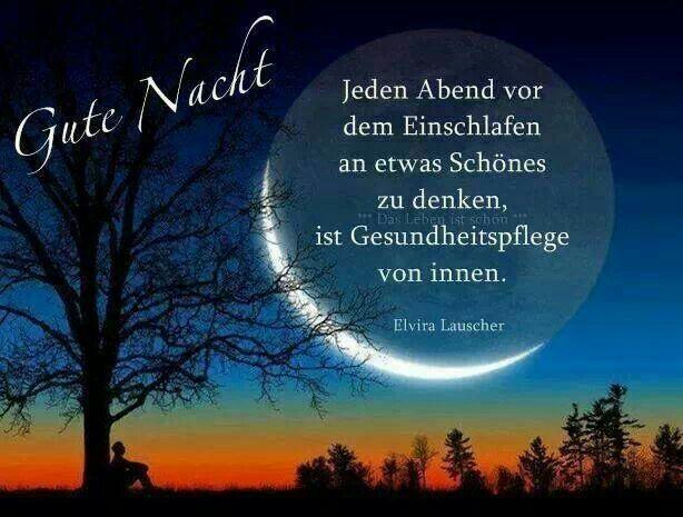 Gute nacht wünsche ich dir - Gute nacht wünsche ich dir