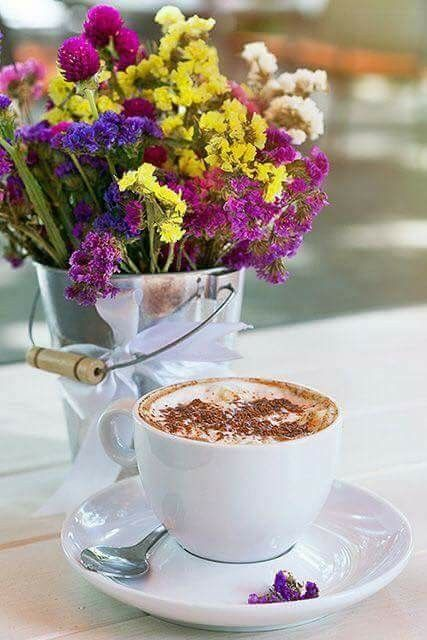 Guten Morgen Grüße Bilder Kostenlos Nachmittags Bilder Und