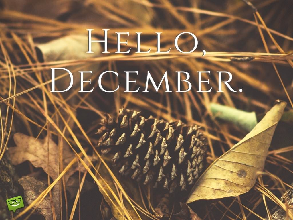 Hallo Dezember 5 - Hallo Dezember