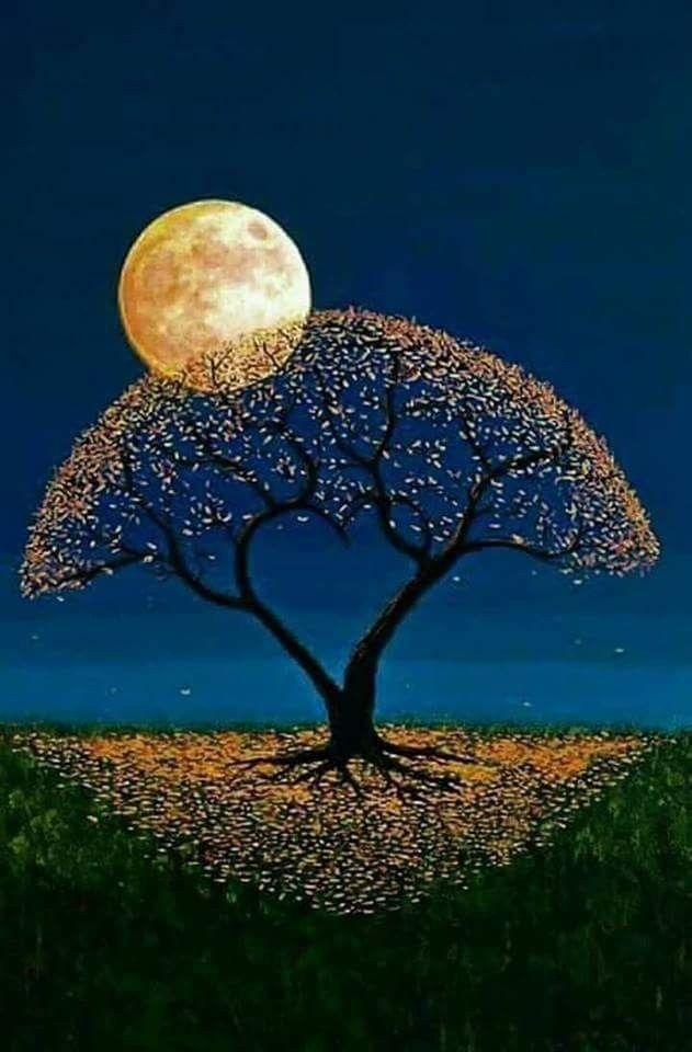 Kurze süße gute nacht geschichte - Kurze süße gute nacht geschichte