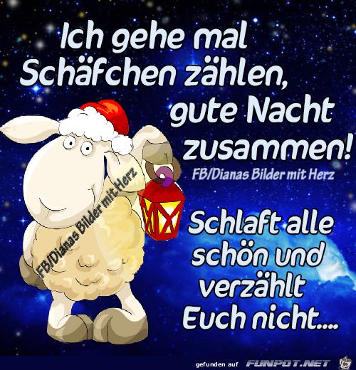Whatsapp Video Gute Nacht Bilder Und Spruche Fur Whatsapp Und