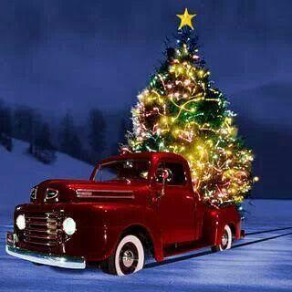 Lustige Fotos Weihnachten - Lustige Fotos Weihnachten