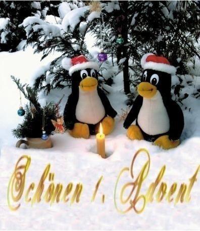 Lustige Sprüche Bilder Weihnachten - Lustige Sprüche Bilder Weihnachten