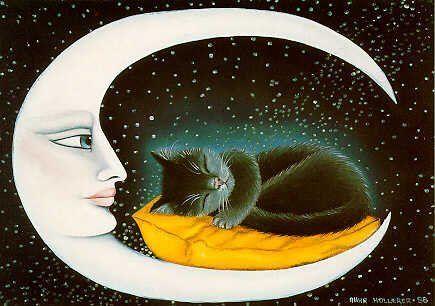 Schlaf schön sprüche - Schlaf schön sprüche