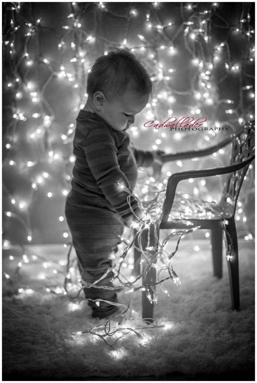 Weihnachtsessen Bilder - Weihnachtsessen Bilder