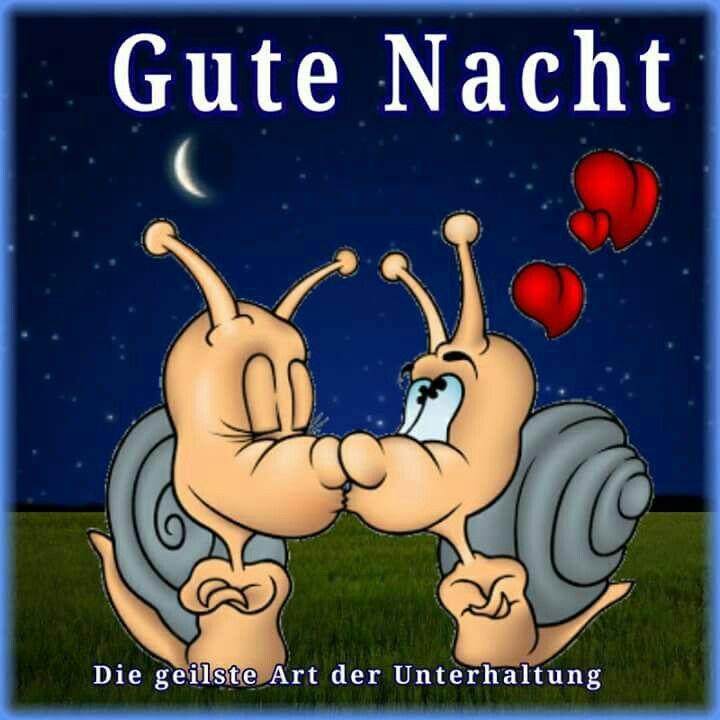 Whatsapp Gute Nacht Bilder Kostenlos Bilder Und Spruche Fur