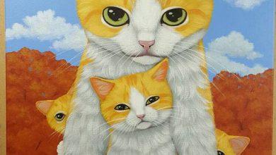 Animated Cat Pictures Bilder 390x220 - Animated Cat Pictures Bilder