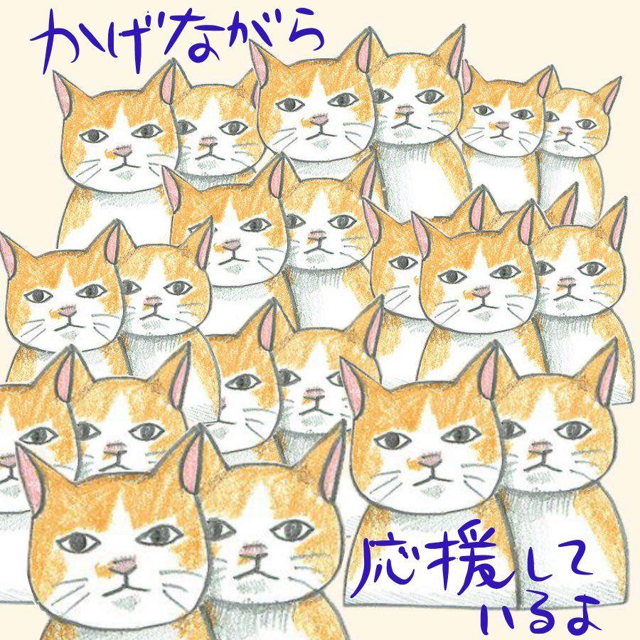 Katzenbilder Zum Ausdrucken Gratis   Bilder und Sprüche ...