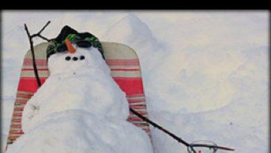 Bilder Clipart Weihnachten 390x220 - Bilder Clipart Weihnachten