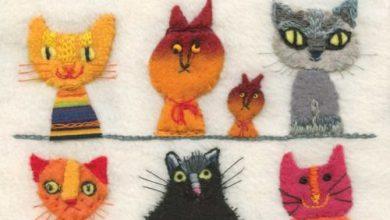 Bilder Kleine Katzen Bilder Kostenlos 390x220 - Bilder Kleine Katzen Bilder Kostenlos