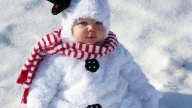 Bilder Zu Weihnachtsbaum 390x220 - Bilder Zu Weihnachtsbaum