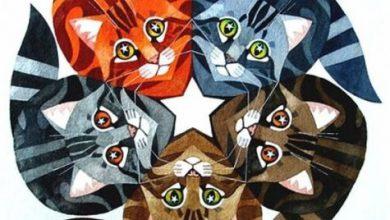 Bildschirmschoner Katzen Kostenlos 390x220 - Bildschirmschoner Katzen Kostenlos