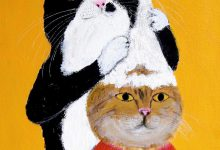 Caption For Cat Pictures Bilder 220x150 - Caption For Cat Pictures Bilder