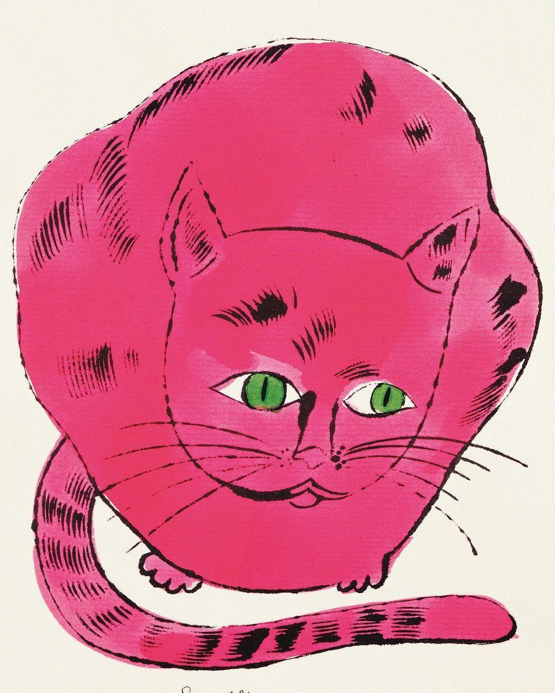 Cat And Kitten Images Bilder - Cat And Kitten Images Bilder