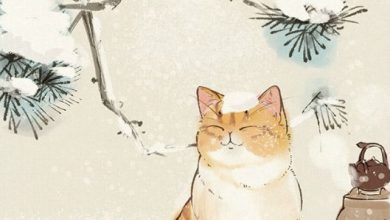 Cat Pictures To Colour In For Free Bilder 390x220 - Cat Pictures To Colour In For Free Bilder
