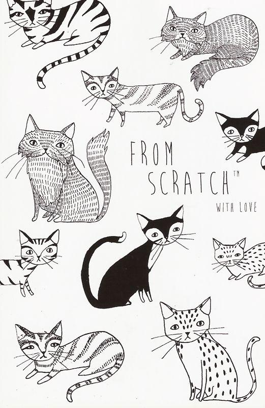 Cat Stock Image Bilder - Cat Stock Image Bilder