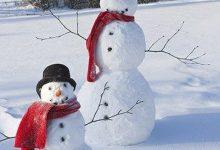 Coole Schneemänner 220x150 - Coole Schneemänner