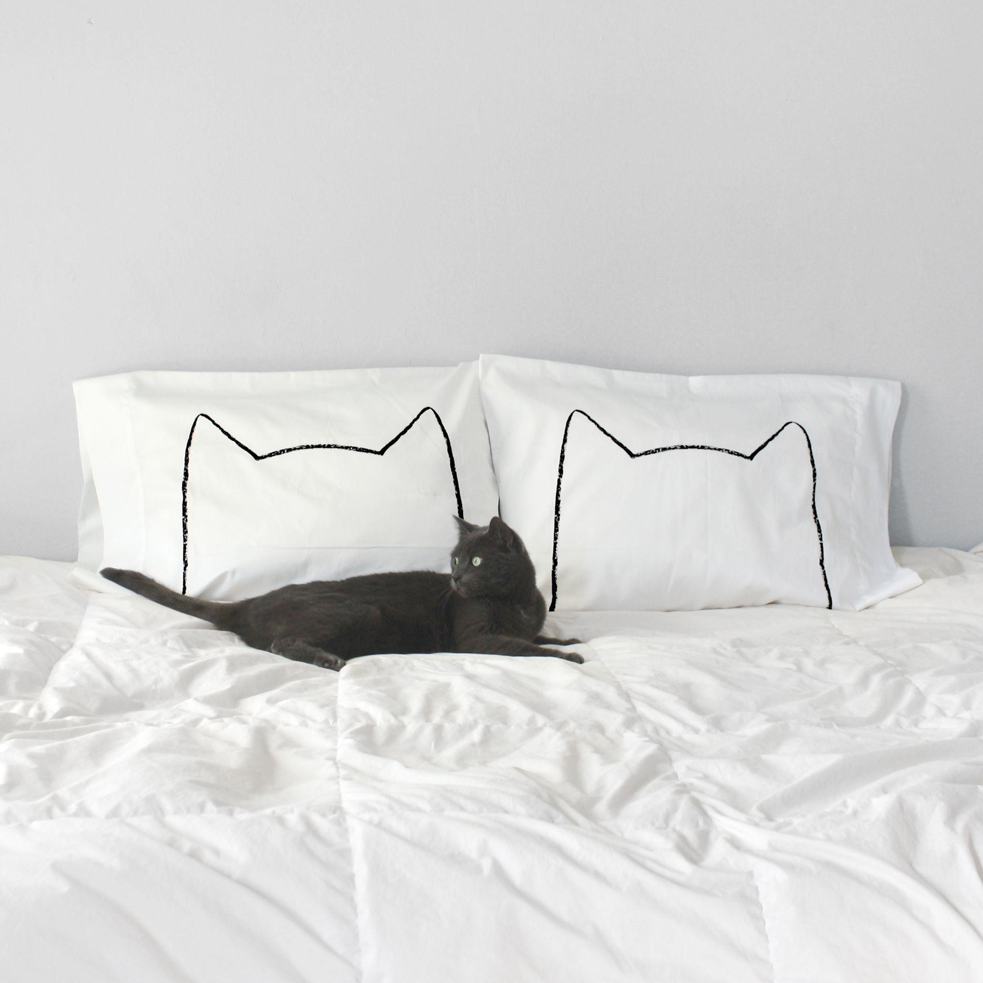 cute cat images with quotes bilder  bilder und sprüche