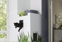 Cute Cats Hd Pic Bilder 220x150 - Cute Cats Hd Pic Bilder