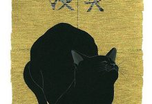 Cute Kitten Cat Photo Gallery Bilder 220x150 - Cute Kitten Cat Photo Gallery Bilder