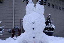 Der Schneemann 220x150 - Der Schneemann