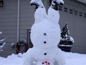 Der Schneemann 290x220 - Der Schneemann