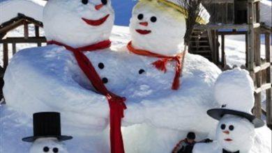 Ein Besonderer Schneemann 390x220 - Ein Besonderer Schneemann