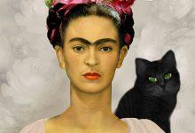 Foto Mit Katze Bilder Kostenlos 220x150 - Foto Mit Katze Bilder Kostenlos