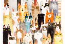 Free Cat Pictures To Download Bilder 220x150 - Free Cat Pictures To Download Bilder