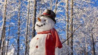 Frosty Der Schneemann Text 390x220 - Frosty Der Schneemann Text