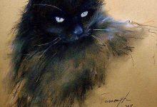 Funny Cat Posts Bilder 220x150 - Funny Cat Posts Bilder