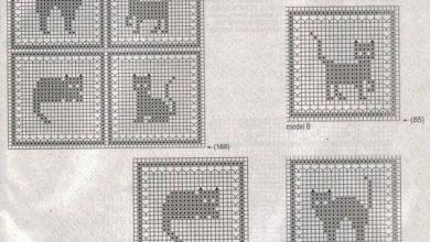 Funny Cat Websites Bilder 390x220 - Funny Cat Websites Bilder