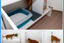 Funny Katzen 220x150 - Funny Katzen