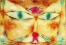 Funny Kitten Images Bilder 220x150 - Funny Kitten Images Bilder