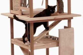 Geliebte Katze 330x220 - Geliebte Katze