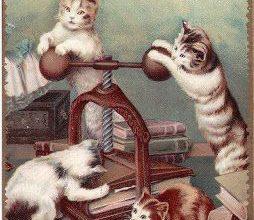 Gemälde Katze 254x220 - Gemälde Katze